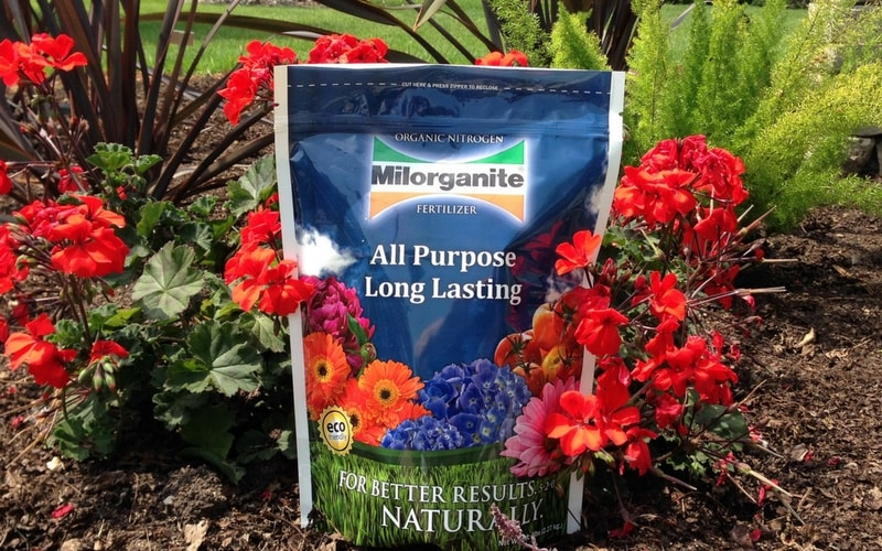 Use Milorganite in your garden for healthy, vibrant flowers.