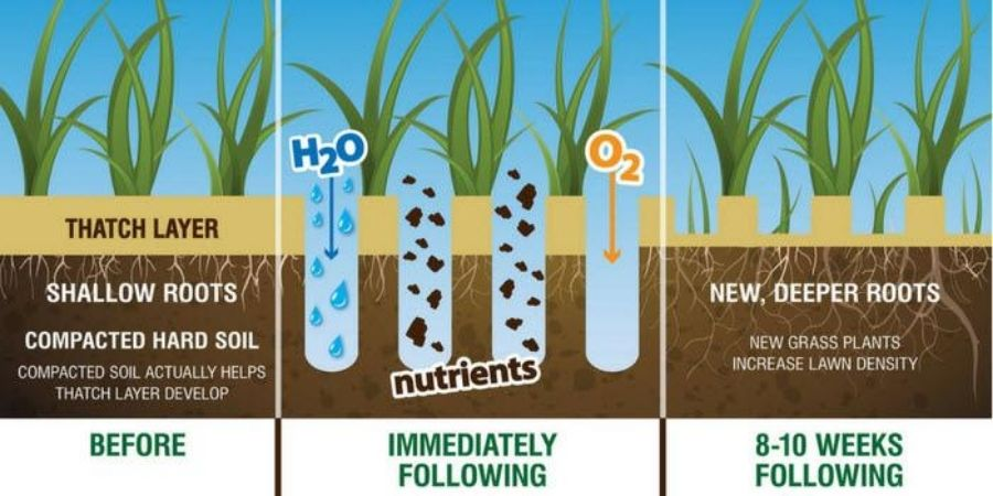 graphic illustrating how aeration works