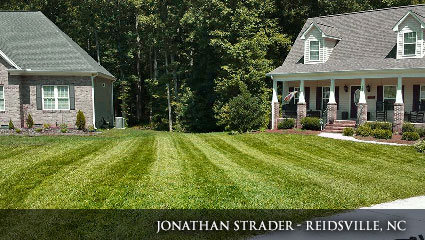 Vibrant, green lawn in North Carolina fertilized with Milorganite.