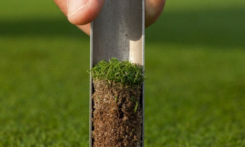 Taking a soil sample of turf