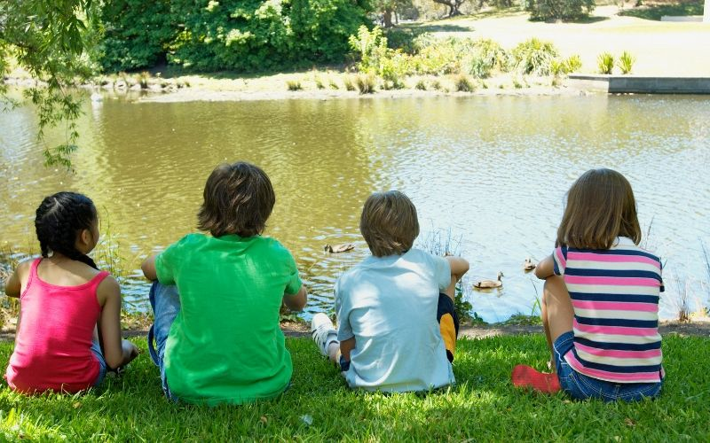 four young kids sitting on a lawn feeding ducks by the water