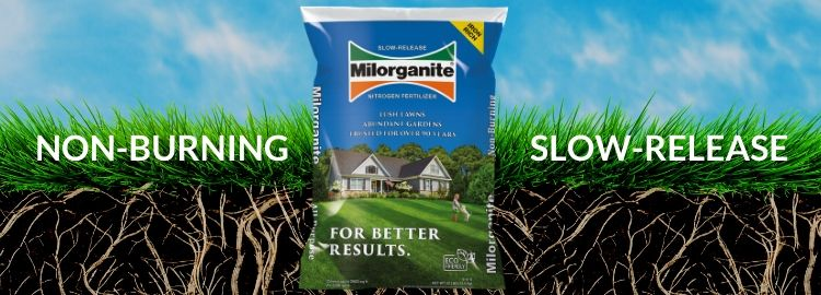 Milorganite Fertilizer Rate and Schedule