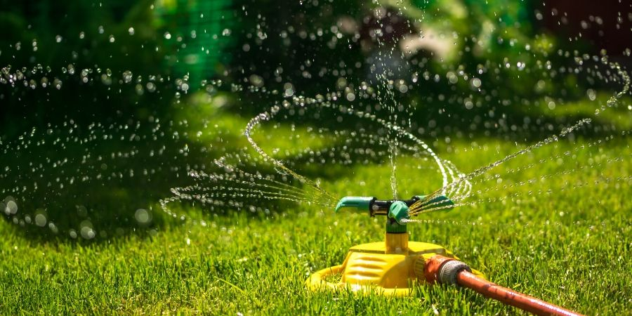 sprinkler over green grass