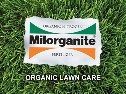 Joe Lamp'l explains the five steps to a beautiful organic lawn.