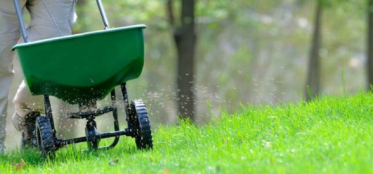 Broadcast Spreader Yard Work : Learn what type of lawn spreader to use and how