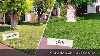 Before-and-after comparison of Milorganite fertilizer in Texas.