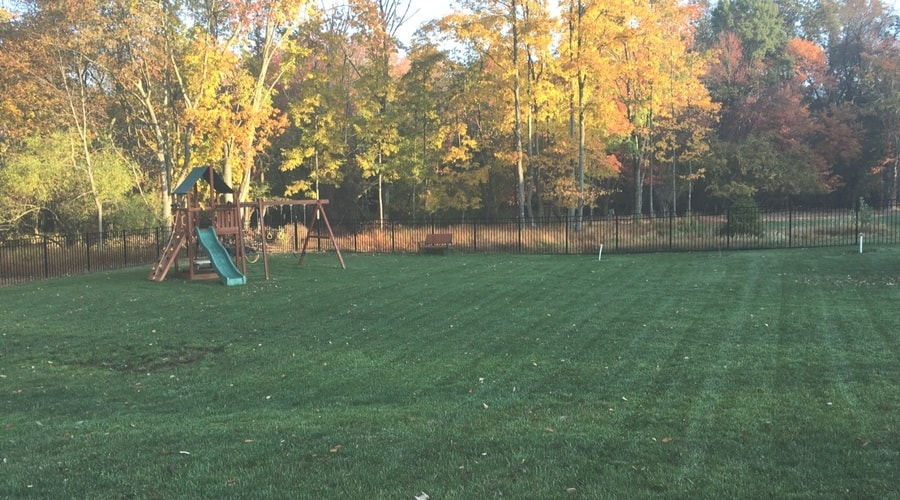 Backyard with lawn and swingset in fall.