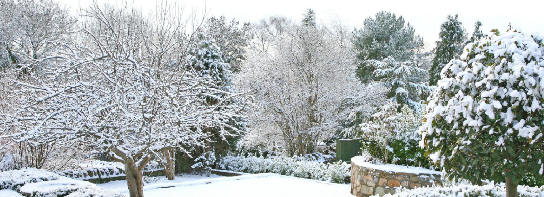 Milorganite blog green and growing naturally for Winter garden maintenance