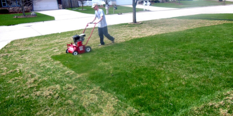 Benefits Of Dethatching And Aerating Your Lawn Milorganite