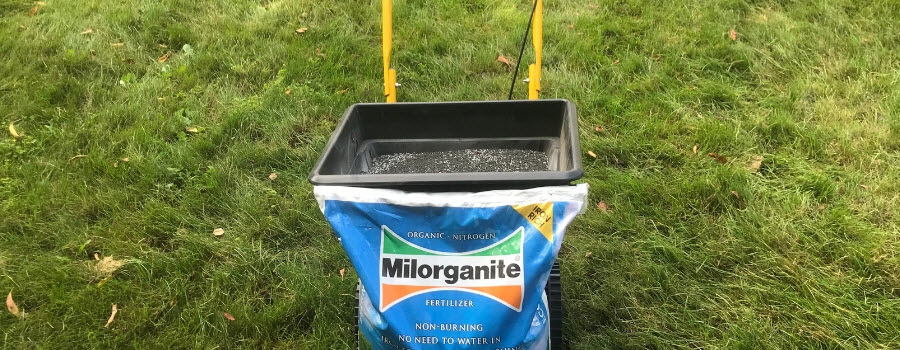 Bag of Milorganite and a spreader in the lawn.
