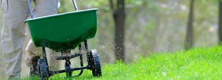 Spreader Settings Milorganite Fertilizer