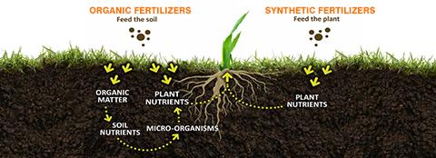 Why use organic fertilizer for Mineral soil vs organic soil