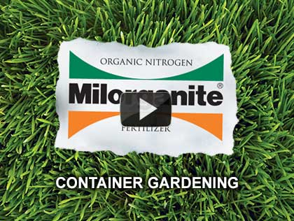 This video explains how to start a container garden.