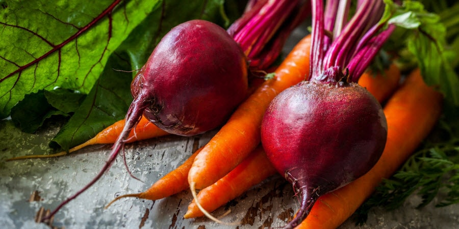 Beets and Carrots in the garden