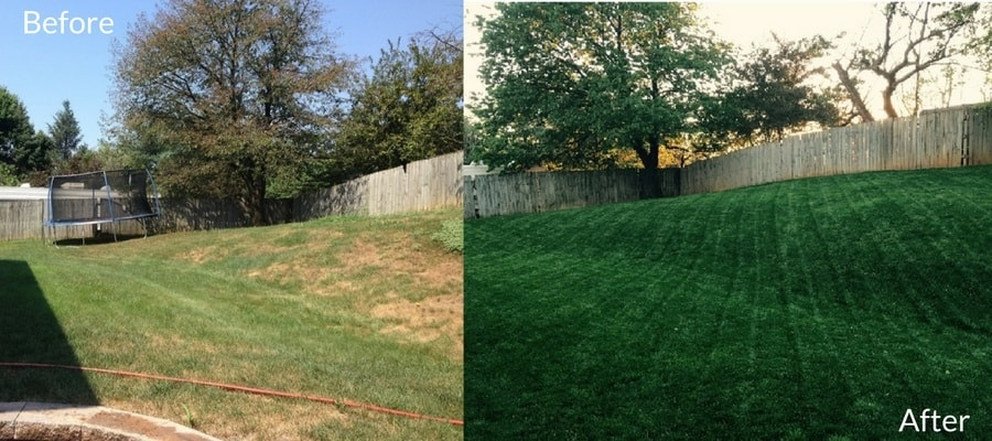 A lawn Before and After applying Milorganite fertiizer.