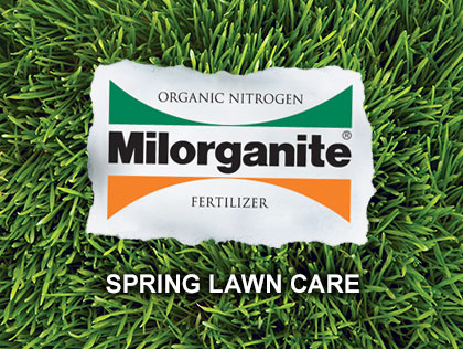 This video shows how to get started with your lawn in early spring.