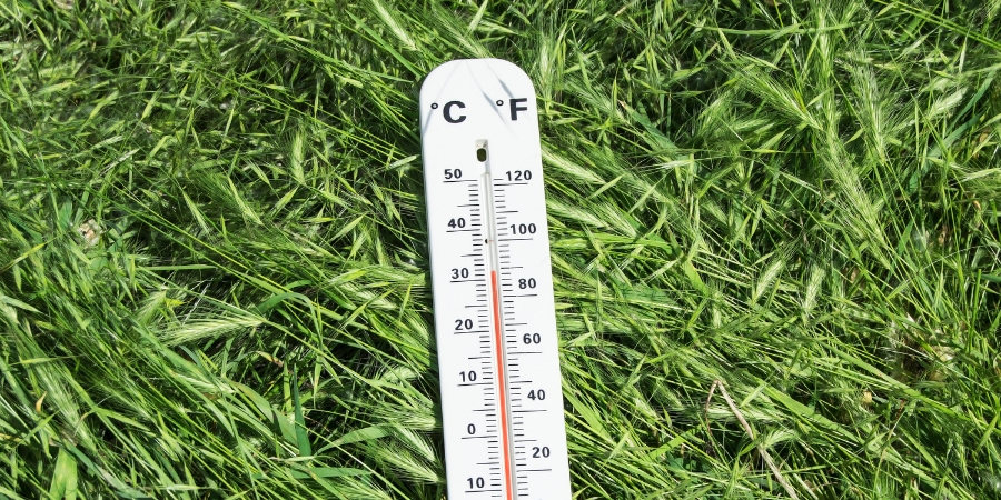 Never do this to your lawn winter edition Thermometer