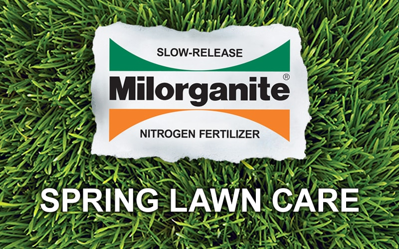Spring Lawn Care with Melinda Myers