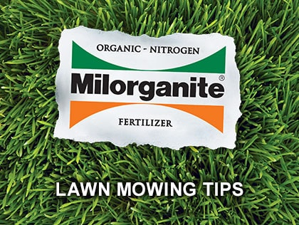 Learn six mowing tips for a healthier lawn.