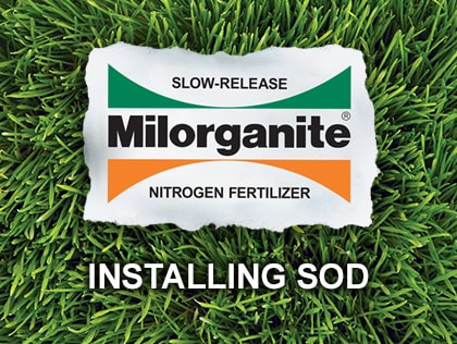 This video shows how to install sod.