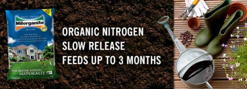 Milorganite fertilizer is made from organic nitrogen, has a slow release, and feeds for up to three months.