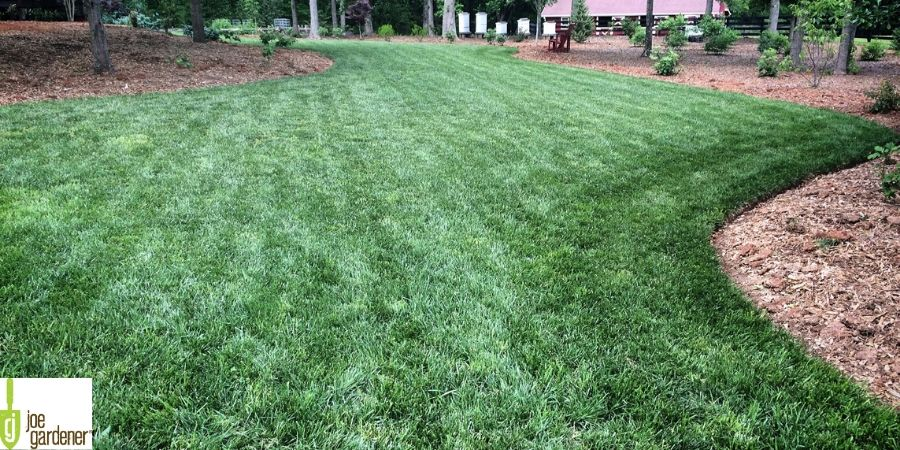 lawn in rehabilitation
