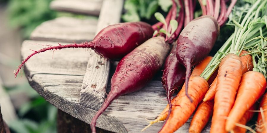 carrots and beets on a table