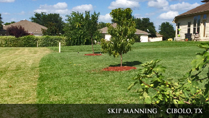 Green and healthy lawn in Texas fertilized with Milorganite fertilizer.