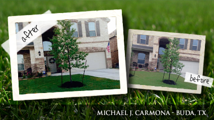Before-and-after picture of lawn fertilized with Milorganite for just two months.