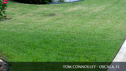 Comparision of a healthy green lawn that is fertilized with Milorganite, and a more brown lawn that does not use Milorganite.