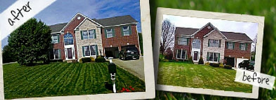 Before and after picture of a lawn fertilized with Milorganite.