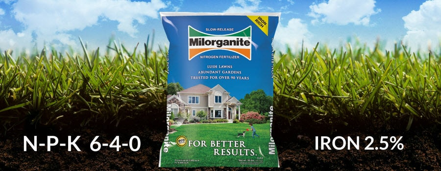 Milorganite 36 lb bag of fertilizer in the grass