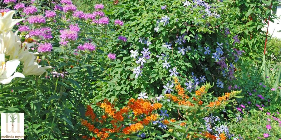 Milorganite Examples of Native Plant Design