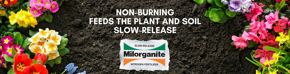 Milorganite fertilizer promotes healthy flower gardens
