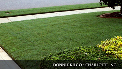 Bright green lawn fertilized with Milorganite.