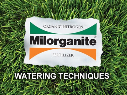 This video shows how to properly water your lawn.