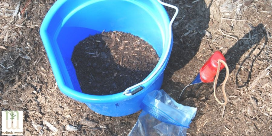 Test your soil before diagnosing disease