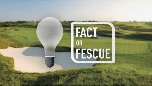 Fact or Fescue