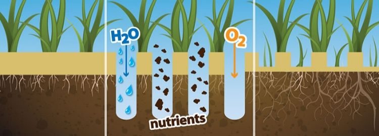 Aeration illustration of H20, nutrients and O2