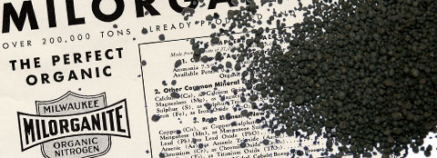 Milorganite fertilizer on an old Milorganite advertisement.