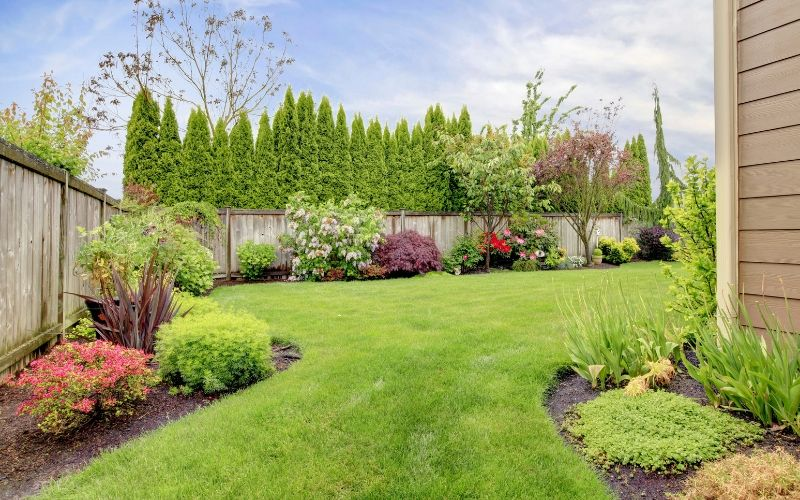 organic green lawn and landscaping