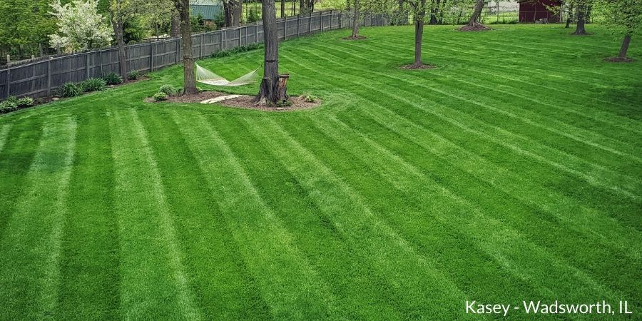 lush lawn with stripes
