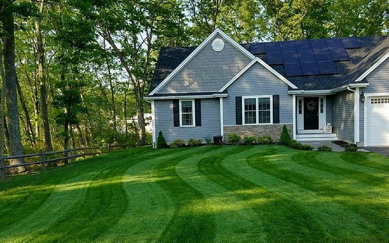 A lush, green lawn fertilized with Milorganite.