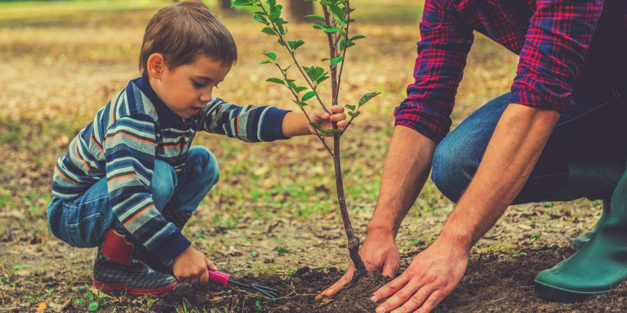 Dan and Son Planting a Tree