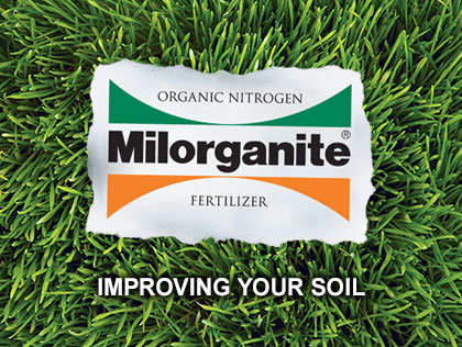 How to Improve Soil in Lawn or Garden
